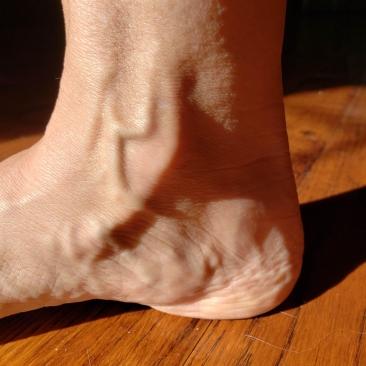 Ankle interior